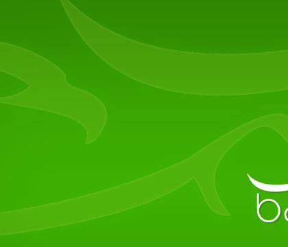 Logo BareedMe